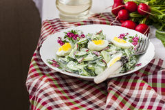 Salad radishes and cucumbers in sour cream sauce. With egg Stock Photography