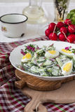 Salad radishes and cucumbers in sour cream sauce Stock Image