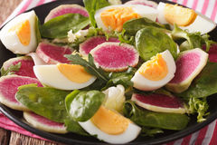 Salad with radishes, eggs, spinach and lettuce mix close-up. hor. Salad with radishes, eggs, spinach and lettuce mix close-up on the table. horizontal Royalty Free Stock Image