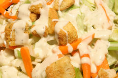 Salad with ranch dressing. Iceberg salad with carrots, croutons and ranch dressing Royalty Free Stock Photography