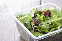 Salad, ready to eat the supermarket. Stock Images