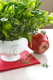 Salad and red apple Stock Photography