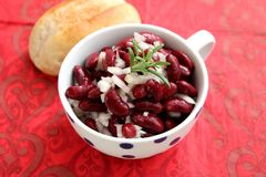 Salad of red beans. A fresh salad of red beans with onions royalty free stock images