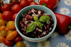 Salad of red beans. A salad of red beans and onions with vinegar and oil royalty free stock photos