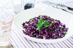 Salad of red cabbage with onions and greens Stock Photos