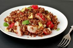 Salad with red quinoa,avocado and radish with basil on white plate on black background. Front horizontal view Stock Photos