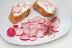 Salad of red radish. A fresh salad of red radish with bread Royalty Free Stock Image