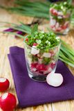 Salad with red radish and green onion. Close up food Royalty Free Stock Image