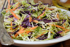 Salad of red and white cabbage Royalty Free Stock Photo