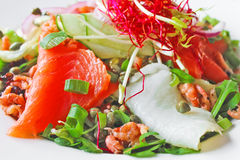 Salad with red and white fish Stock Photo
