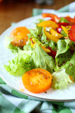 Salad with red and yellow peppers and lettuce and tomatoes Stock Photo