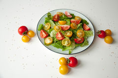 Salad with red and yellow tomatoes. Bright and fresh salad with red and yellow tomatoes royalty free stock image