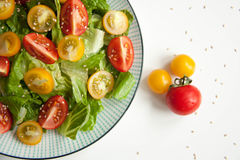 Salad with red and yellow tomatoes. Bright and fresh salad with red and yellow tomatoes stock image