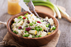 Salad with rice, apple, cranberry and peas. In a bowl Royalty Free Stock Images