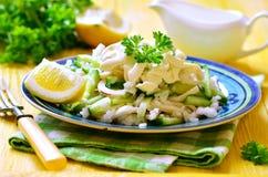 Salad from rice,calamari and fresh cucumber. Royalty Free Stock Photos