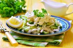 Salad from rice,calamari and fresh cucumber. Stock Image