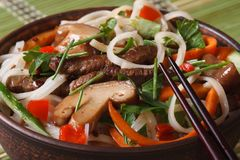 Salad of rice noodles with meat, mushrooms and vegetables macro Stock Photography
