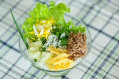 Salad with rice and tuna Royalty Free Stock Photos
