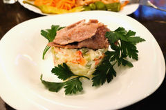 Salad of roasted veal Royalty Free Stock Photos