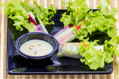 Salad roll for dinner Royalty Free Stock Photo
