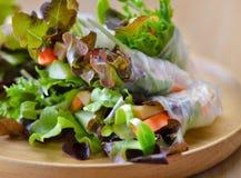 Fresh salad roll healthy food royalty free stock photos
