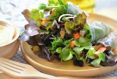 Organic salad roll healthy food stock photo