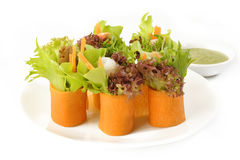 Salad roll Stock Photography