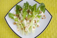 Salad Romaine Lettuce with Ranch Dressing Stock Photography