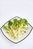 Salad Romaine Lettuce with Ranch Dressing. Salad with Romaine Lettuce, walnuts and Creamy Ranch Dressing Stock Images