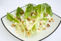 Salad Romaine Lettuce with Ranch Dressing. Salad with Romaine Lettuce, walnuts and Creamy Ranch Dressing Stock Photography