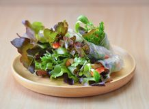 Salad rool healthy food on wooden plate stock image