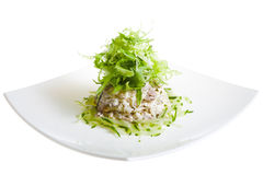 Salad with rucola Stock Images