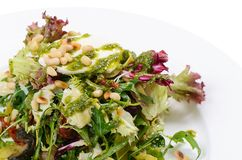 Salad with rucola and pine nuts Stock Images