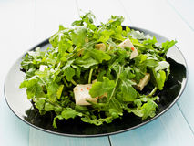 Salad with rucola and tofu. Plate with rucola salad and tofu cheese. Shallow dof Stock Photography