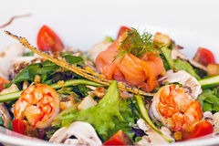 Salad of SaintTropez Royalty Free Stock Image