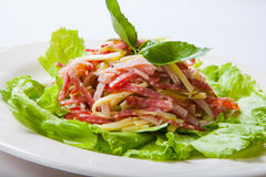 Salad from a salami, ham and cheese on a white plate Royalty Free Stock Image