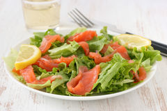 Salad with salmon Royalty Free Stock Image