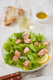 Salad with salmon Royalty Free Stock Photos