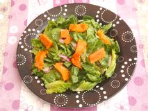 Salad with salmon fish Stock Images