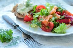 Salad with salmon Royalty Free Stock Photography