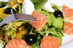 Salad with salmon and mascarpone cheese, pomelo leaves and lettuce Royalty Free Stock Photo