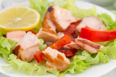 Salad with salmon, pepper Royalty Free Stock Photos
