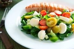 Salad and salmon Royalty Free Stock Image