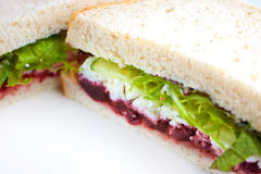 Salad sandwich Royalty Free Stock Image