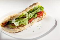 Salad sandwich Stock Photos