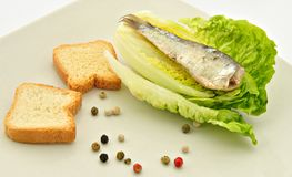 Salad with sardines Stock Photo