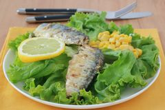 Salad with sardines Stock Photos