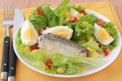 Salad with sardines Stock Image