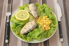 Salad with sardines and corn Stock Photo