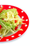 Salad savoy cabbage and tomatoes in a  plate Royalty Free Stock Photo